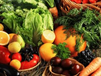 Convention sur l'Alimentation Equilibrée : les fédérations sectorielles dressent un bilan intermédiaire