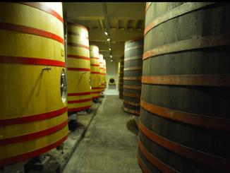 CEO Omer: 'Ons bier moet meer Fransen en Nederlanders verleiden'