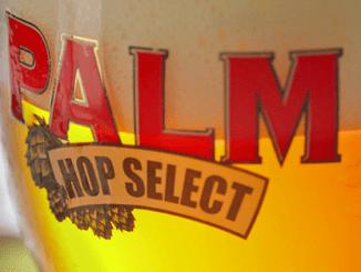 Palm Session: een nieuw bier voor de Nederlandse markt