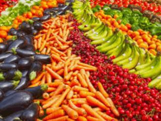 WHO steunt niet langer omstreden EAT-dieet