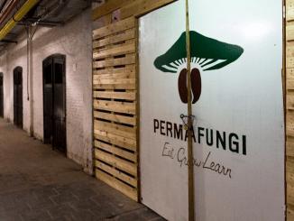 Permafungi se réorganise à la recherche d'un nouveau souffle