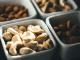 Voeding van de toekomst: 2020 visie