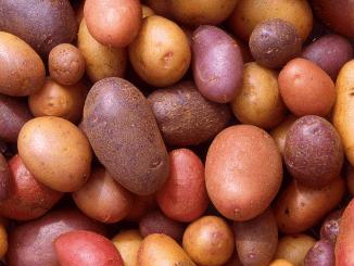 Vrije markt voor aardappelen ingestort door coronavirus