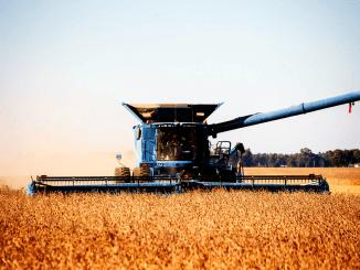 Wereldwijd kan landgebruik akkerbouw gehalveerd worden