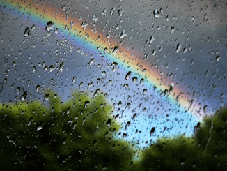 Après la pluie vient le beau temps ?