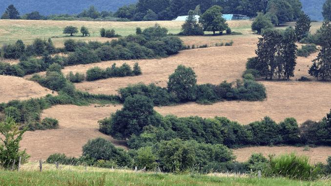 landschap wallonië