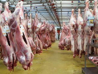 Registre des travailleurs vivant à l'étranger dans le secteur de la viande
