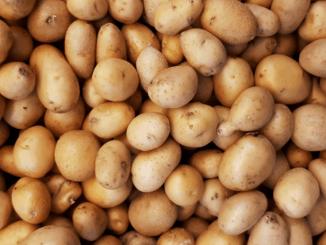 Uitnodiging Potato Days 2020 Live