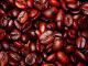 Onderzoek aan WUR bevestigt het bestaan van klimaatbestendige koffieplanten in Oeganda